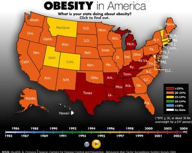external image obesity.jpg