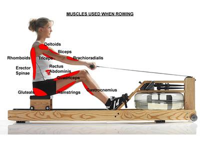 best home rowing machine 2012